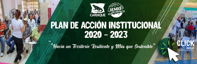 PAI 2020-2023